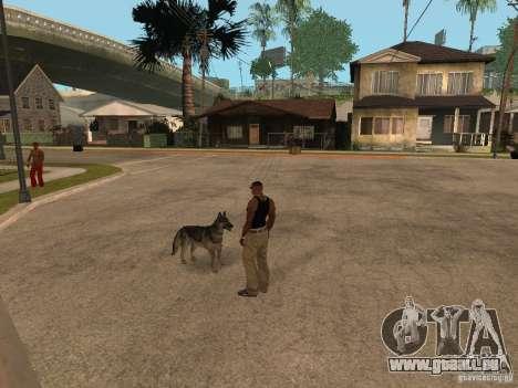 Hund in GTA San Andreas für GTA San Andreas