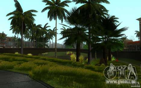 Perfekte Vegetation v. 2 für GTA San Andreas neunten Screenshot