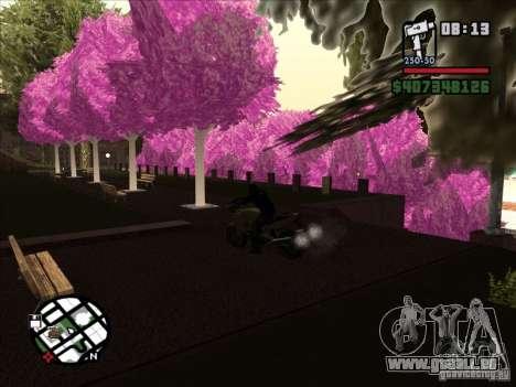 Petite anecdote pour GTA San Andreas quatrième écran