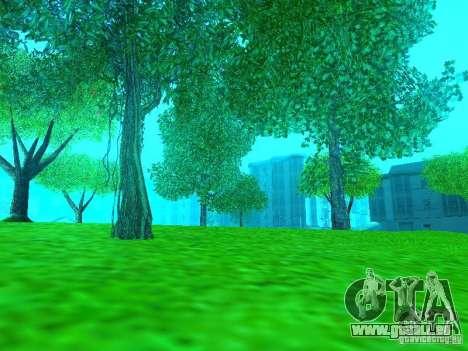 Neue Farbe-Mod für GTA San Andreas zweiten Screenshot