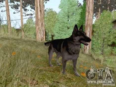 Hunting Mod pour GTA San Andreas huitième écran
