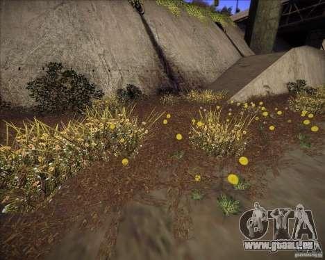 Grass form Sniper Ghost Warrior 2 pour GTA San Andreas quatrième écran