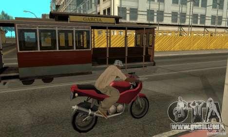 Reiniger für GTA San Andreas dritten Screenshot