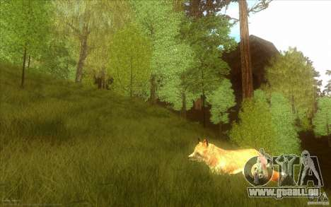 Wild Life Mod 0.1b für GTA San Andreas siebten Screenshot
