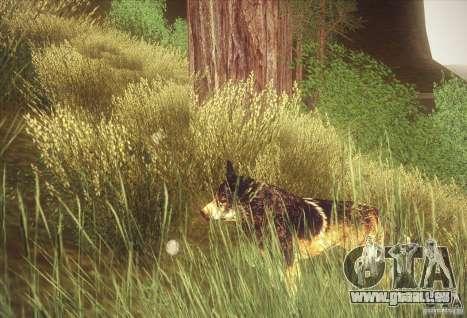 Hunting Mod pour GTA San Andreas deuxième écran