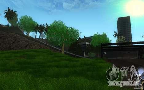 Végétation parfaite c. 2 pour GTA San Andreas deuxième écran