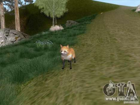 Wild Life Mod 0.1b für GTA San Andreas achten Screenshot