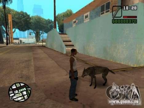 Animals in Los Santos für GTA San Andreas dritten Screenshot