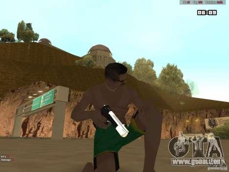 Weapon Pack V1.0 für GTA San Andreas