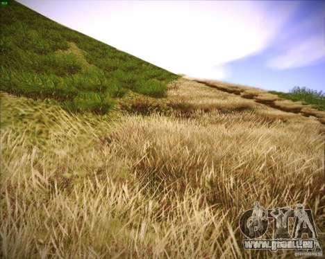 Grass form Sniper Ghost Warrior 2 pour GTA San Andreas huitième écran