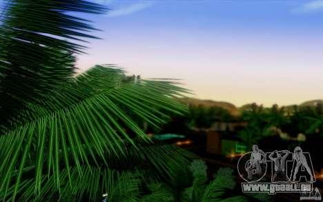 Neue Tajmcikl für GTA San Andreas dritten Screenshot