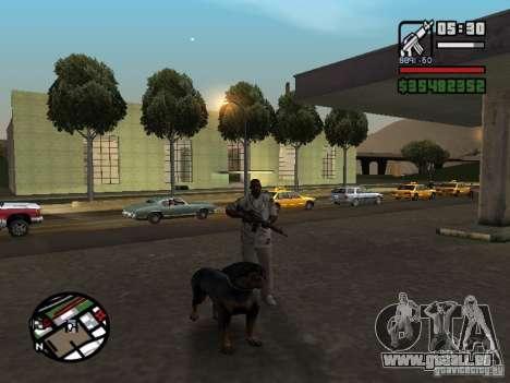 Rottweiler pour GTA San Andreas