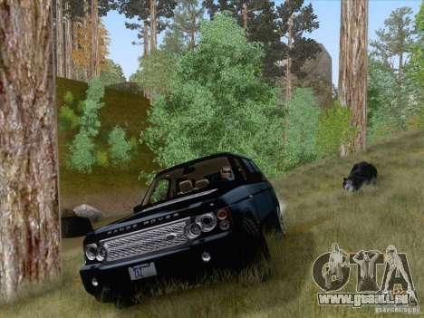 Wild Life Mod 0.1b pour GTA San Andreas deuxième écran