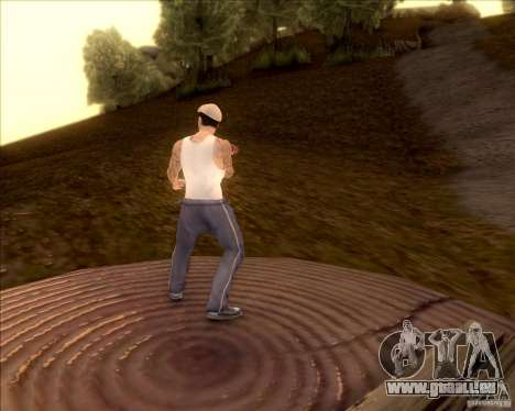 SkinPack for GTA SA für GTA San Andreas achten Screenshot