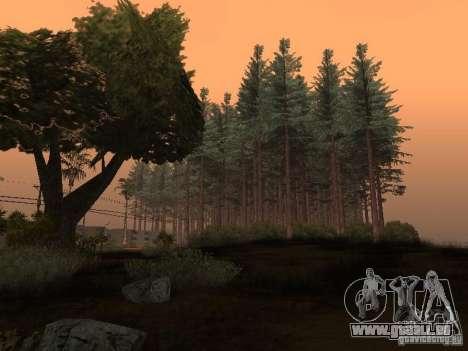 Wald in Las Venturas für GTA San Andreas