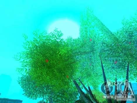 Nouveau Mod de couleur pour GTA San Andreas troisième écran