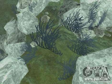 Textures HD des fonds marins pour GTA San Andreas quatrième écran