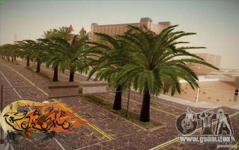 New Roads Las Venturas v1.0 pour GTA San Andreas
