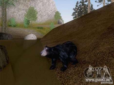Wild Life Mod 0.1b für GTA San Andreas fünften Screenshot