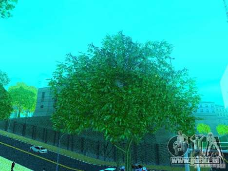 Nouveau Mod de couleur pour GTA San Andreas quatrième écran