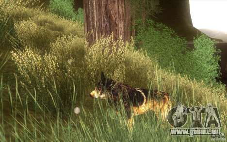 Wild Life Mod 0.1b für GTA San Andreas dritten Screenshot