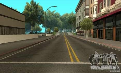 Reiniger für GTA San Andreas