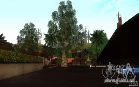 Perfekte Vegetation v. 2 für GTA San Andreas siebten Screenshot