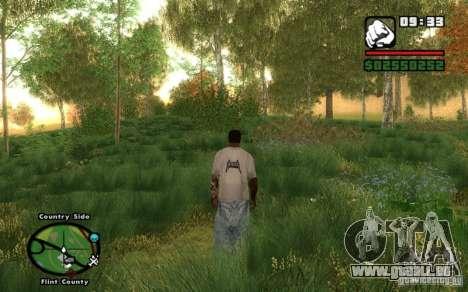 Project Oblivion 2010 For Low PC V2 pour GTA San Andreas quatrième écran