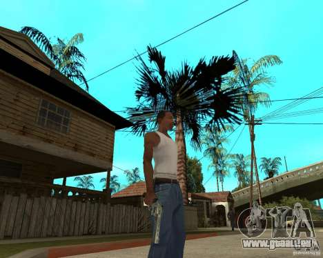 Magnum 22,2 pour GTA San Andreas