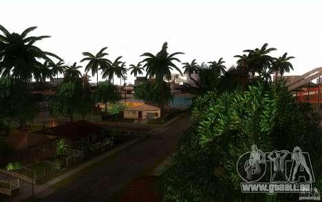 Perfekte Vegetation v. 2 für GTA San Andreas fünften Screenshot
