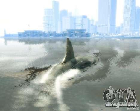 Megalodon pour GTA 4 est un droit