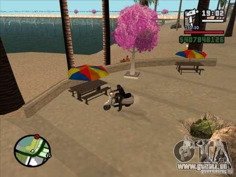 Petite anecdote pour GTA San Andreas deuxième écran