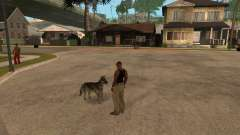 Hund in GTA San Andreas