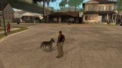 Chien dans GTA San Andreas
