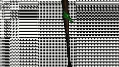 Mèches avec un brassard vert