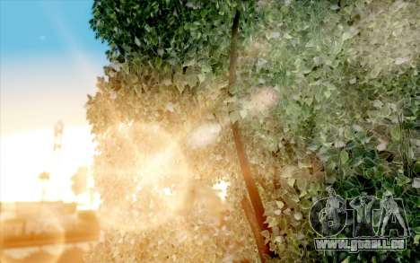 Atmosphere realistic autumn v1.0 für GTA San Andreas sechsten Screenshot