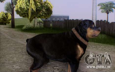 Rottweiler from GTA 5 für GTA San Andreas zweiten Screenshot
