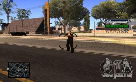 C-HUD pour GTA San Andreas cinquième écran