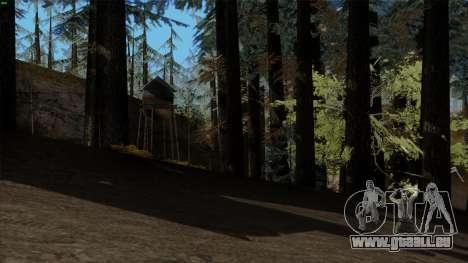 Der Dichte Wald v2 für GTA San Andreas zweiten Screenshot