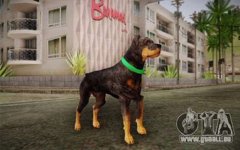 Rottweiler from GTA V pour GTA San Andreas