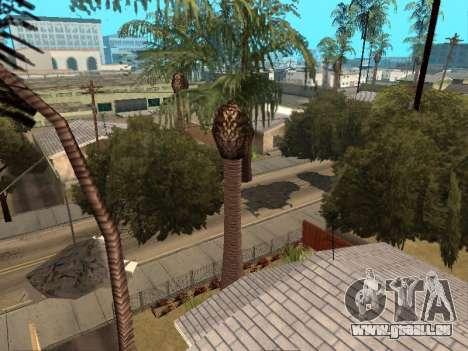 Dschungel auf einer Straße Aztec für GTA San Andreas zweiten Screenshot
