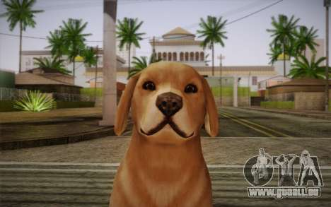 Rottweiler für GTA San Andreas dritten Screenshot