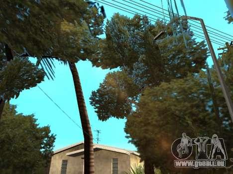 Dschungel auf einer Straße Aztec für GTA San Andreas fünften Screenshot