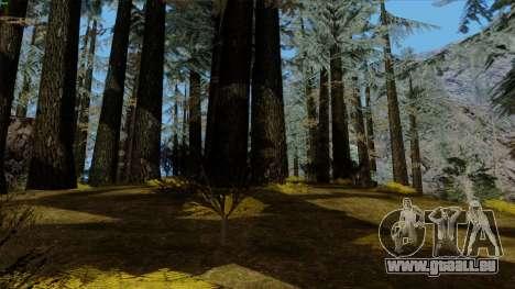Der Dichte Wald v2 für GTA San Andreas sechsten Screenshot
