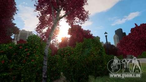 Advanced Graphics für GTA 4