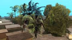 Dschungel auf einer Straße Aztec