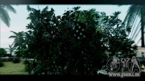 Graphic Unity V2 pour GTA San Andreas cinquième écran