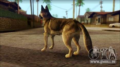 Dog Skin v2 pour GTA San Andreas deuxième écran