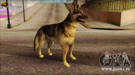 Dog Skin v2 pour GTA San Andreas