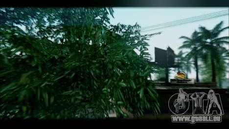 Graphic Unity V2 pour GTA San Andreas deuxième écran